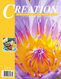 online magazine - Creation Illustrated Summer 2017, Vol. 24, No. 2