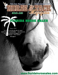 online magazine - Horse 'N Tack Mar 14 Area 7