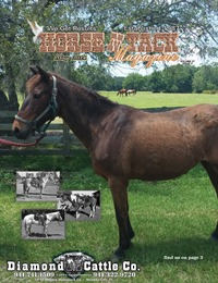 online magazine - Horse 'N Tack May 14 area 12