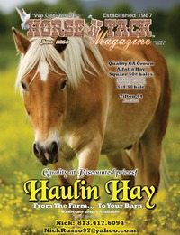online magazine - Horse 'N Tack June14 area 0