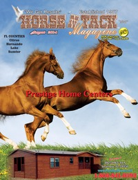 online magazine - Horse 'N Tack Aug 14 area 13-P