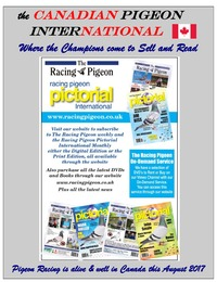 online magazine - the Canadian Pigeon International magazine August 2017 issue