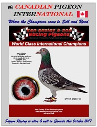 online magazine - the Canadian Pigeon International magazine October 2017 issue