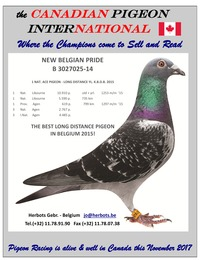 online magazine - the Canadian Pigeon International magazine November 2017 issue