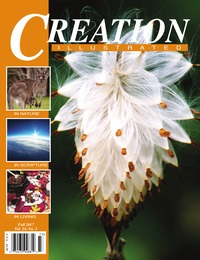 online magazine - Creation Illustrated Fall 2017, Vol. 24, No. 3