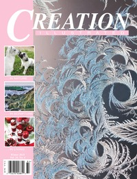 online magazine - Creation Illustrated Winter 2018 edition NoAds