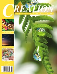 online magazine - Creation Illustrated Spring 2018 Edition wAds