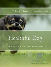 online magazine - Healthful Dog Volume 5 Issue 3