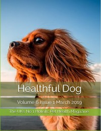 online magazine - Healthful Dog Volume 6 Issue 1